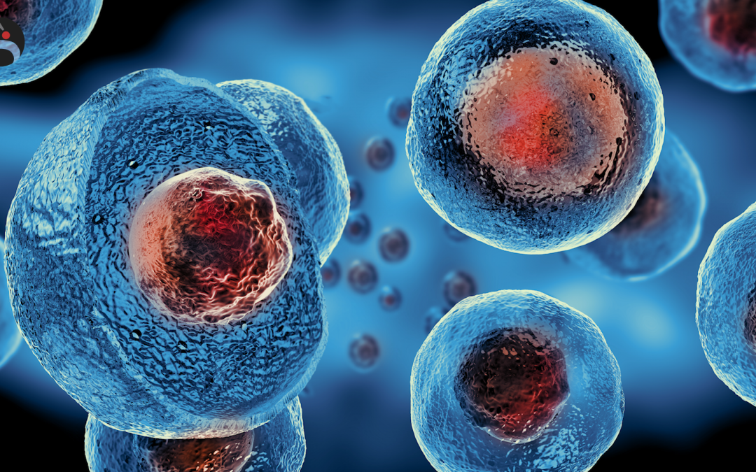 """Le cellule staminali: che cosa sono queste cellule """"madri""""?"""