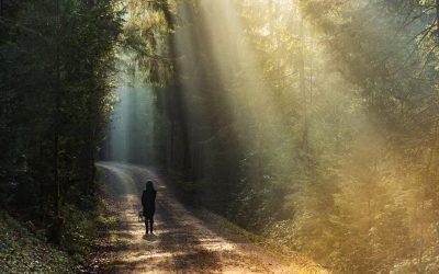 La luce che cura: i primi studi scientifici in Italia